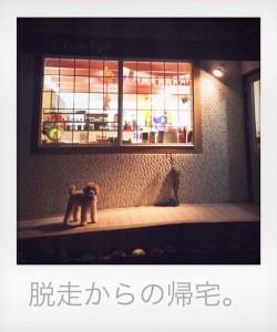 ちょび部_8451